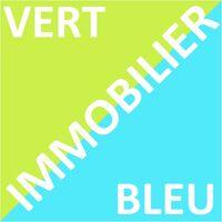 Logo VERT ET BLEU IMMOBILIER