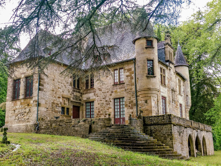 Vendre chateau Terrasson la villedieu  715 000  €