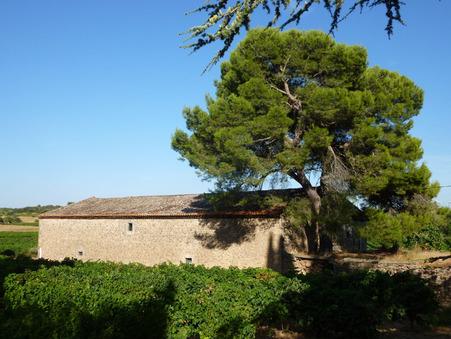 vente terrain MONTBRUN DES CORBIERES 420m2 407000€