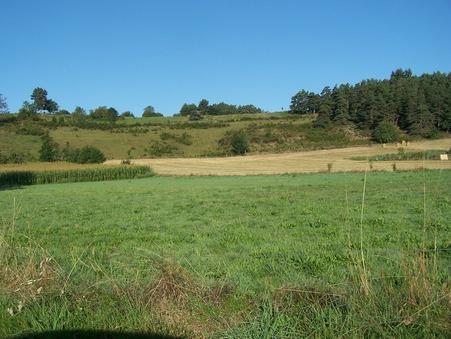 vente terrain YSSINGEAUX 845m2 53400€