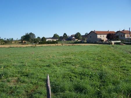 vente terrain YSSINGEAUX 853m2 52500€