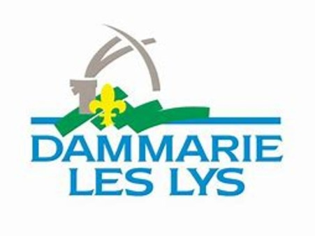 vente terrain DAMMARIE LES LYS 146000 €