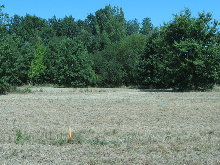 vente terrain Saint-Paul-sur-Save 493m2 100000€