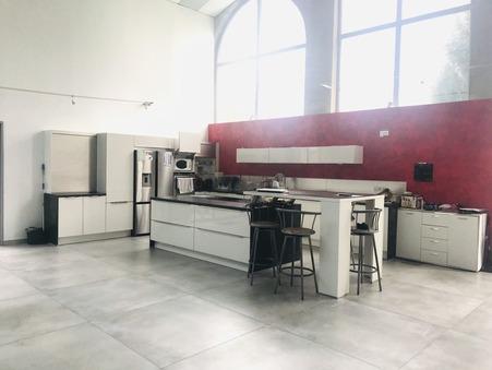 vente maison TREPT 730000 €