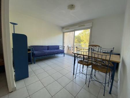 10 location appartement Saint-Georges-d-Orques 650 €