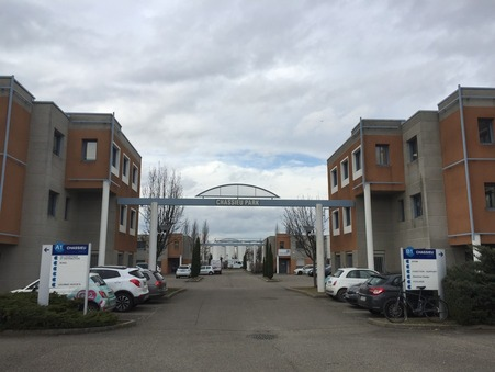 location professionnel CHASSIEU 79m2 7900€