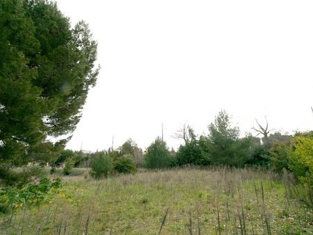 vente terrain DOUZENS 995m2 55000€