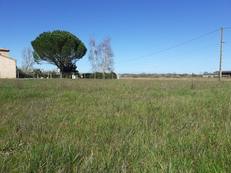 vente terrain GAILLAC 1000m2 72000€
