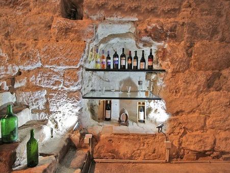 vente viticole NARBONNE 4 400 000  € 450 m²
