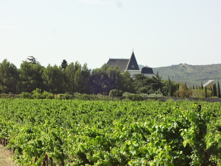 chateau  1295000 €