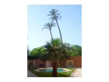 location maison marrakech  500  € 150 m²
