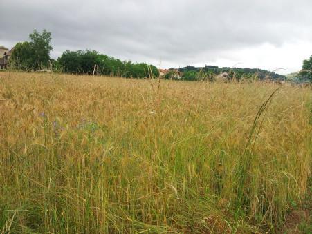 Achat terrain LIVINHAC-LE-HAUT 1060 m² 31 200  €