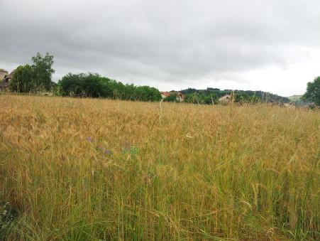 Vente terrain LIVINHAC-LE-HAUT 1100 m² 32 200  €