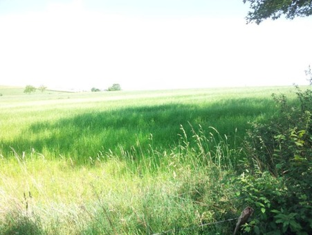 Vente terrain SAINT-PARTHEM 1300 m² 15 000  €