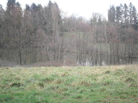 vente terrain BOISSEUIL 35000 €