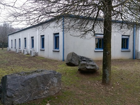 Acheter professionnel ST PRIEST  511 000  €