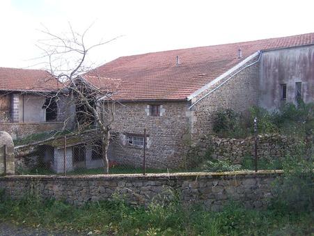 vente maison VOREY 300m2 75000€