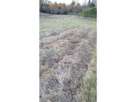 vente terrain GARDOUCH 4800m2 91000€