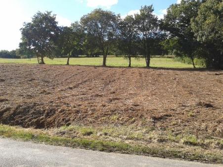 Vente terrain lembeye 11 000  €