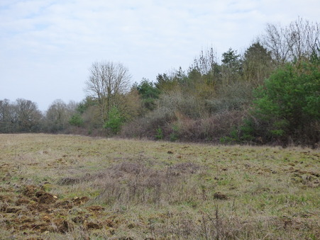 vente terrain Saint-Doulchard 18000 €