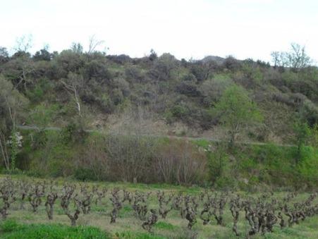 vente terrain CASCASTEL DES CORBIERES 1467m2 47000€