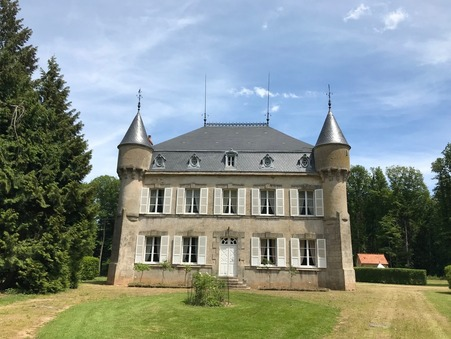 vente chateau LA CHATRE 590m2 535000€