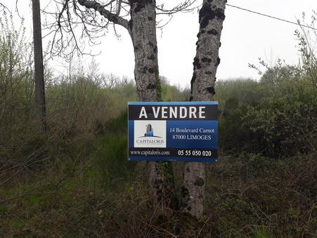 vente terrain COUZEIX 468720 €