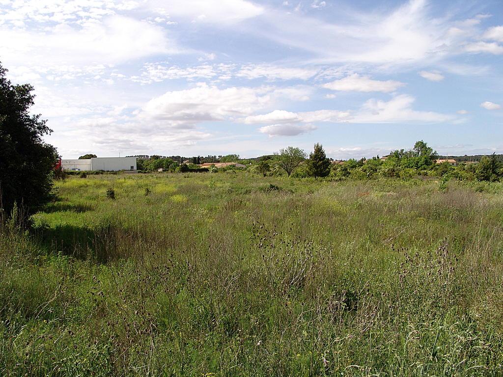 vente terrain Lezignan corbieres Lezignan corbieres 11200
