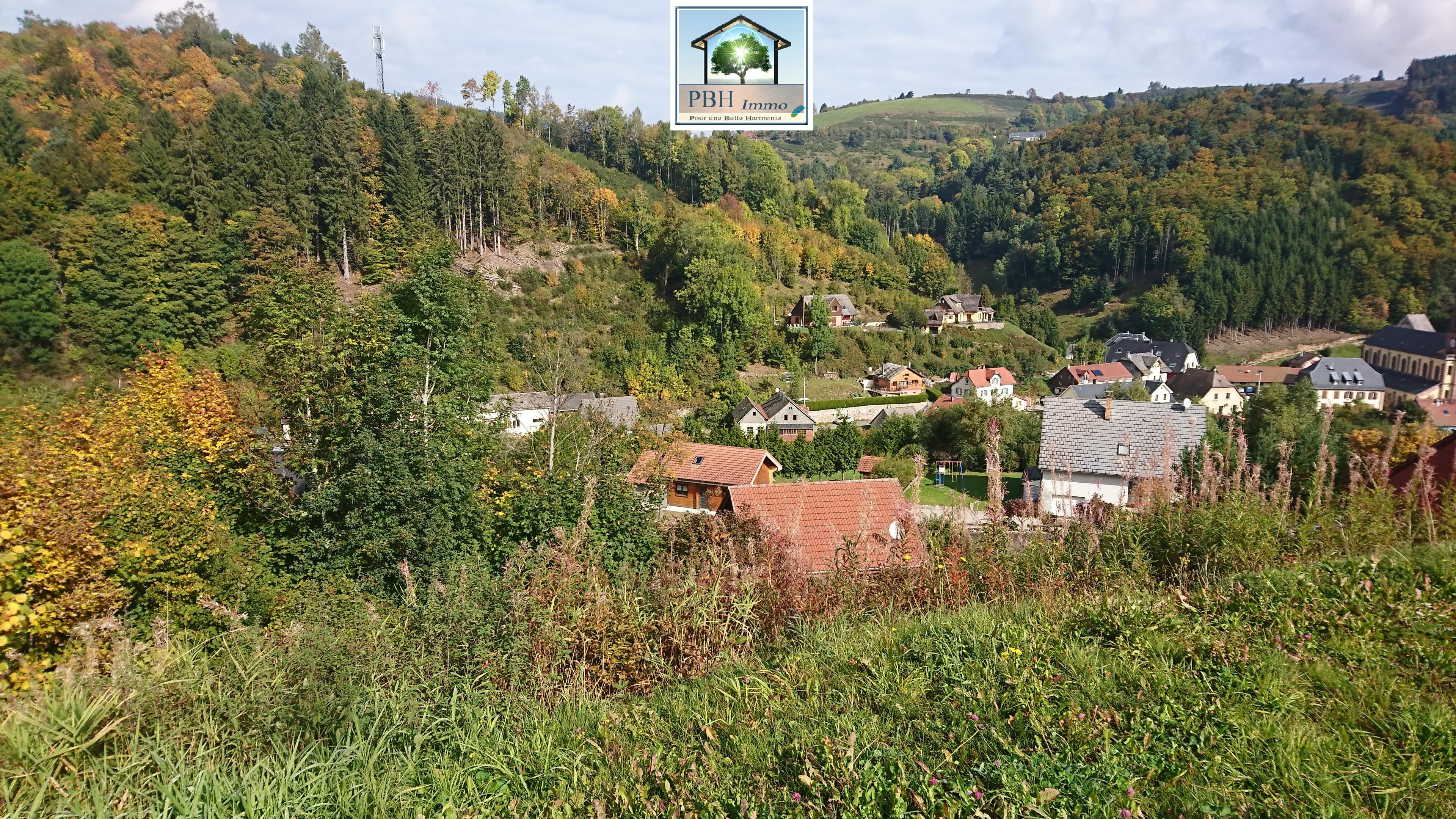 vente terrain Le bonhomme Le bonhomme 68650