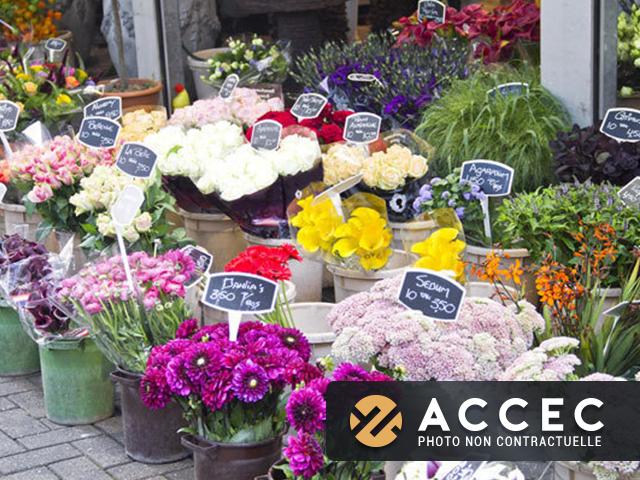 Commerce Fleuriste  - Boutique et Magasin