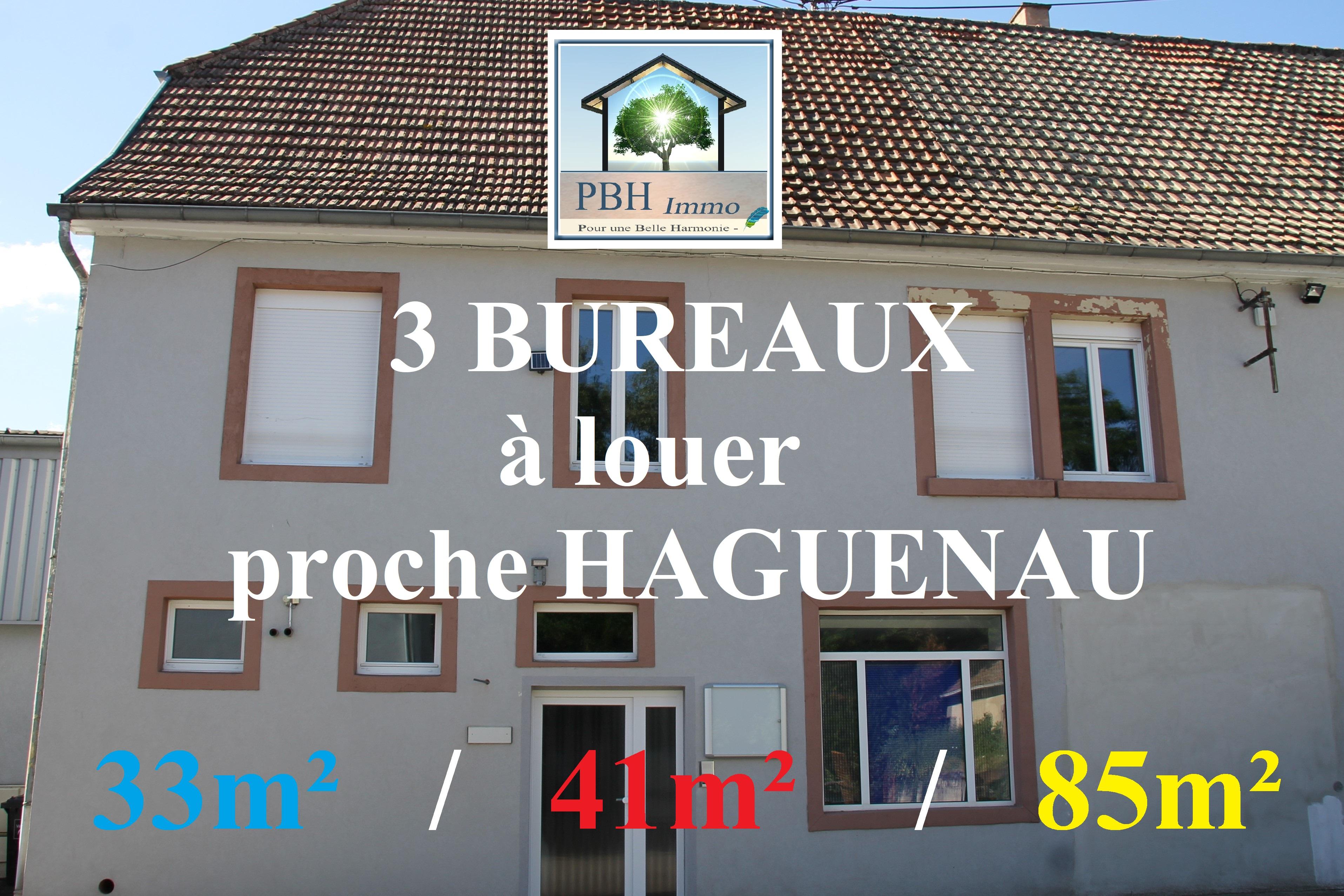 location local 2 pièces Haguenau 67500