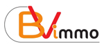 logo BVI Transaction