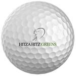 logo HITZA HITZ GREENS