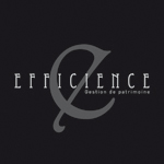 logo Efficience Groupe