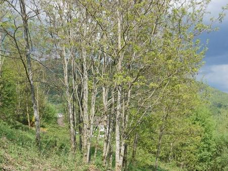 vente terrain SAULXURES SUR MOSELOTTE 0m2 37600€