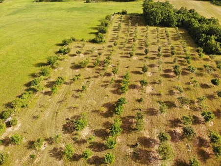 A vendre terrain COULAURES 50000 m² 82 000  €