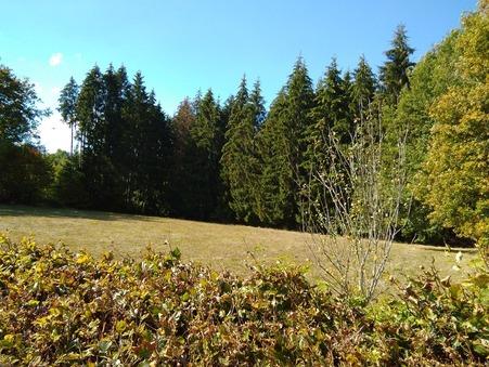 vente terrain LIGINIAC 0m2 23000€