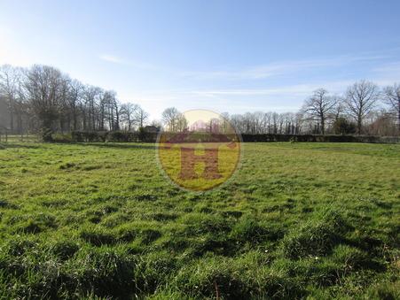 vente terrain ROCHECHOUART 1029m2 23000€