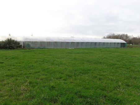 Land sur Saint-Jean-d-Angle ; € 34100  ; Vente Réf. 668