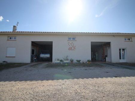Professionnel sur Gaillac ; 495000 €  ; A vendre Réf. RI532_bis