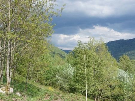 vente terrain SAULXURES SUR MOSELOTTE 0m2 13000€