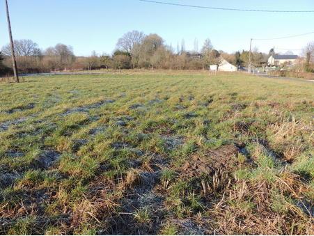 A vendre terrain Le Mele sur Sarthe 61170; 22999 €
