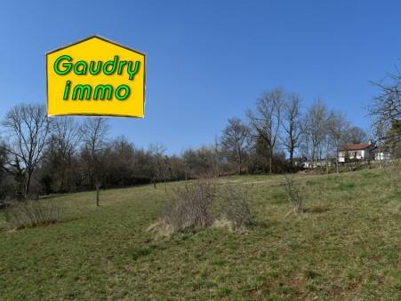 Acheter terrain Vaux sous aubigny 1300 m² 22 000  €