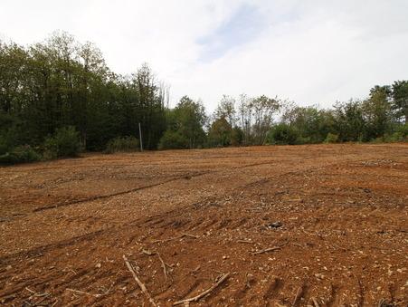 Achat terrain ST AMAND DE COLY 9300 m² 70 800  €