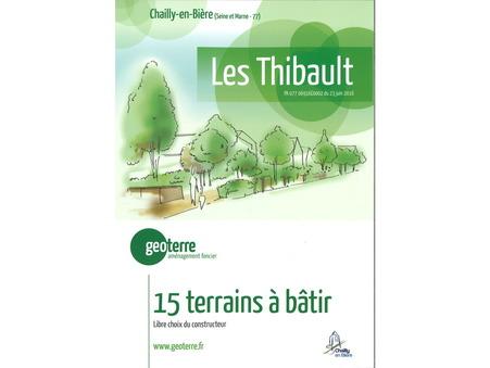 Vente Neuf CHAILLY EN BIERE Réf. LES THIBAULT - Slide 1