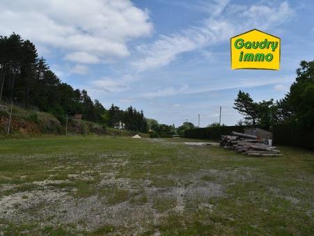 vente terrain SELONGEY 10525m2 75000€