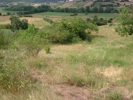 Vente Terrain Saint-affrique Réf. 63vt - Slide 1
