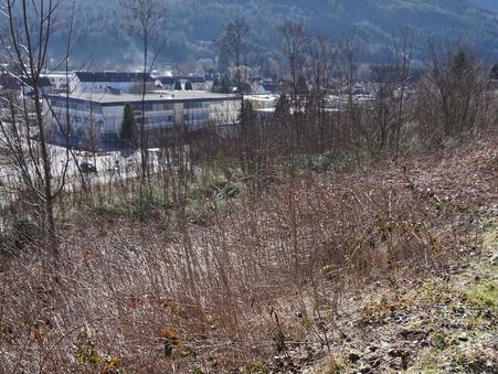 vente terrain SAULXURES SUR MOSELOTTE 0m2 20800€