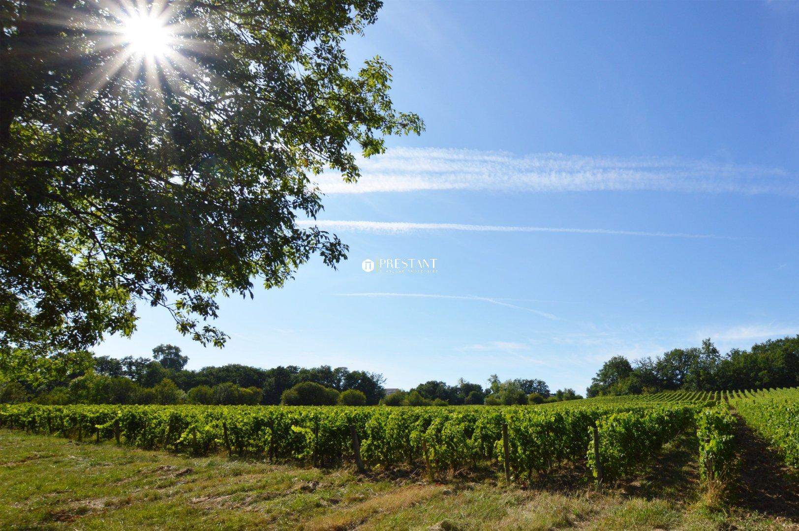 Demeure D Antan Périgueux propriété viticole à vendre - château xiiie xive - sud-ouest